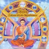 Anime Music Experience by Vitek
