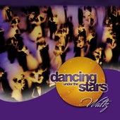 Dancing Under The Stars: Waltz by Jeff Steinberg
