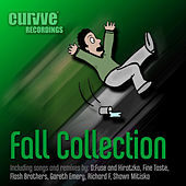 Fall Collection by Various Artists