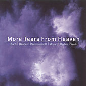 More Tears From Heaven by Various Artists
