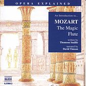 An Introduction to The Magic Flute by Wolfgang Amadeus Mozart