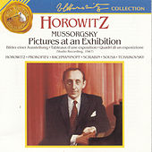 Horowitz - Pictures at an Exhibition by Various Artists
