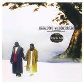 Sou Ni Tile by Amadou & Mariam