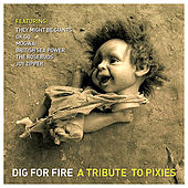 Dig for Fire: a Tribute to Pixies by Various Artists