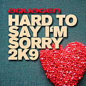Hard To Say I'm Sorry 2K9 by Aquagen