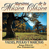 Maestros de la musica clasica - Valses, Polkas y Marchas. Johann Strauss / Peter Tchaikovsy by Various Artists