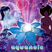 The Pearl by Aquanote