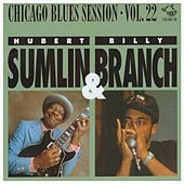 Chicago Blues Session, Vol. 22 by Hubert Sumlin