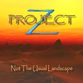 Not The Usual Landscape by Project Z