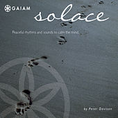 Solace by Peter Davison