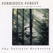 Forbidden Forest - The Music of George Winston by The Taliesin Orchestra