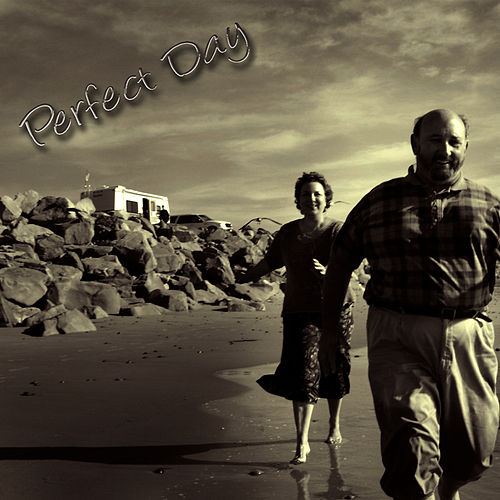 Perfect Day by Studio All Stars