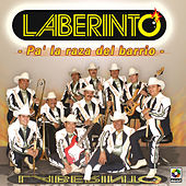 Pa'la Raza Del Barrio by Laberinto