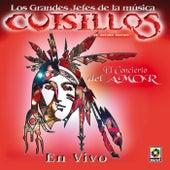 El Concierto Del Amor by Banda Cuisillos