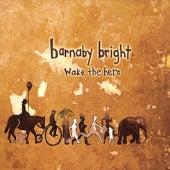 Wake the Hero by Barnaby Bright