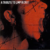 A Tribute To Limp Bizkit by Various Artists