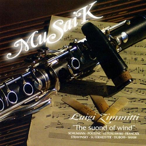 MuSaiK by Luigi Zimmitti