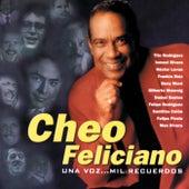 Una Voz Mil Recuerdos by Cheo Feliciano