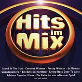 Hits im Mix by Various Artists