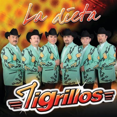 La Dieta by Los Tigrillos