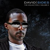 The Collection Volume 2 by David Sides