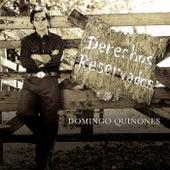 Derechos Reservados by Domingo Quinones