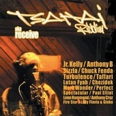 Tsahai Riddim (aka Receive) by Various Artists