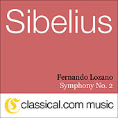 Jean Sibelius, Symphony No. 2 In D, Op. 43 by Various Artists