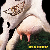 Get A Grip by Aerosmith