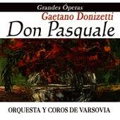 Opera - Don Pasquale by Gaetano Donizetti