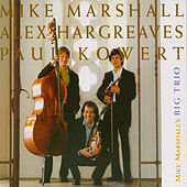 Mike Marshall's Big Trio by Mike Marshall's Big Trio