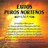 Exito Puros Norteños Vol.1 by Various Artists