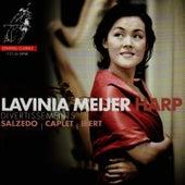 Divertissements by Lavinia Meijer