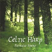 Celtic Harp by Patricia Spero