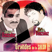 2 Grandes de la Salsa Vol. 2 by Various Artists