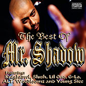 The Best of Mr. Shadow by Mr. Shadow