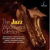 Chesky Woodwinds Collection by Various Artists