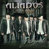 Solo Por Ti by Aliados De La Sierra