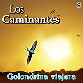 Golondrina Viajera by Los Caminantes