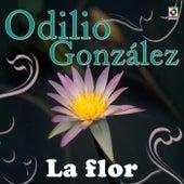 La Flor by Odilio Gonzalez