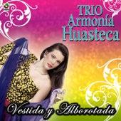 Vestida Y Alborotada by Trio Armonia Huasteca