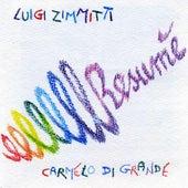 Resumè by Luigi Zimmitti