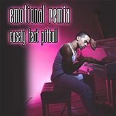 Emotional Pitbull Remix by Casely