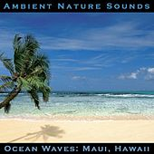 Ocean Waves: Maui, Hawaii by Ambient Nature Sounds