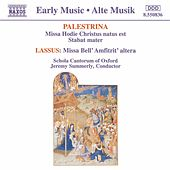 Masses by Palestrina/Lassus