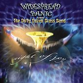 Night Of Joy by Widespread Panic