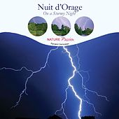 Nuit d orage by Various Artists