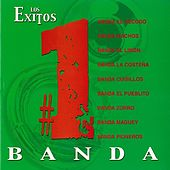 Exitos #1: Banda by Various Artists