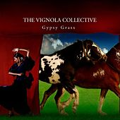 Gypsy Grass by The Vignola Collective