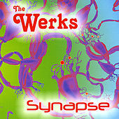 Synapse by The Werks